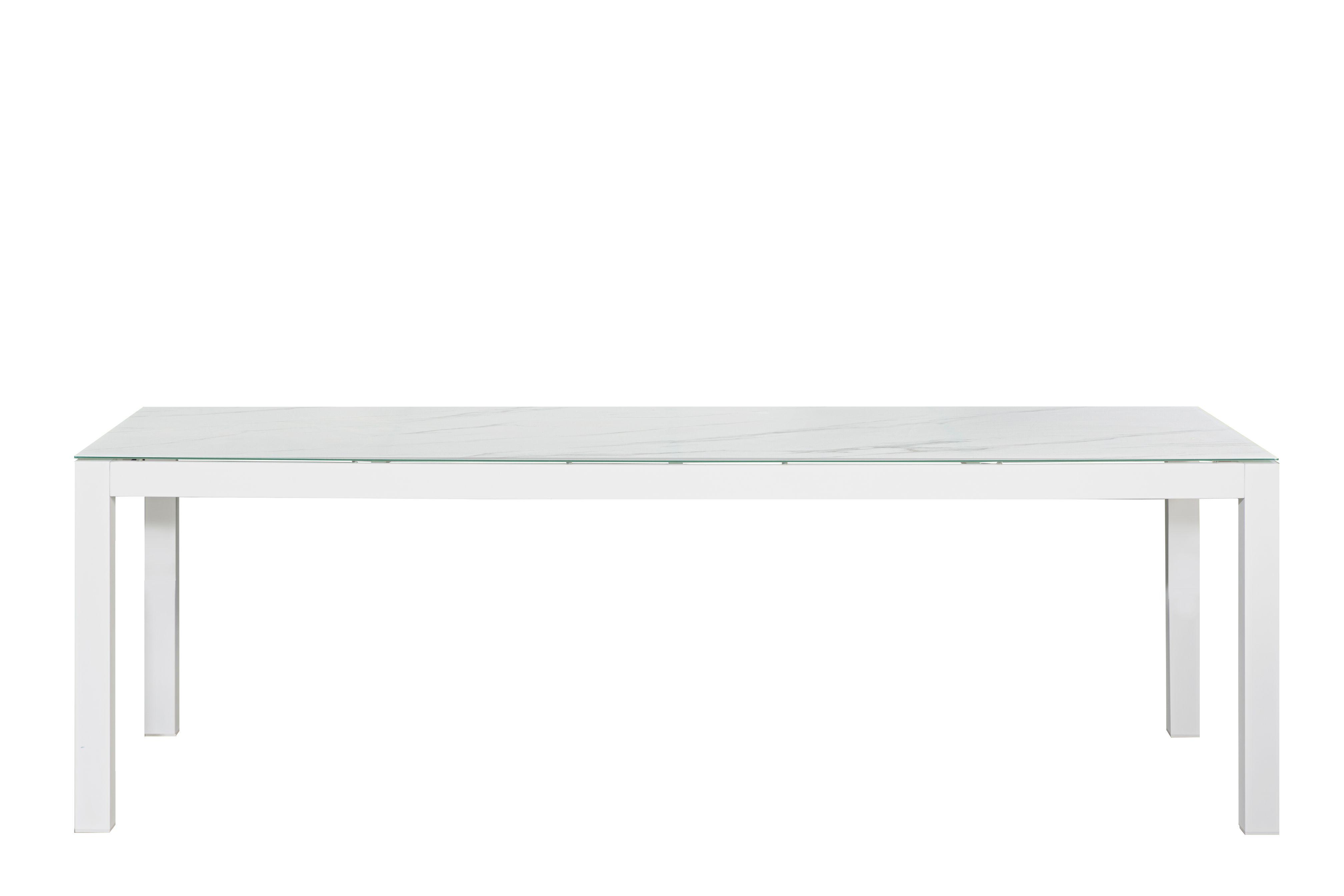 שולחן ענק 240/100 סמ זכוכית לבנה+8 כסאות ORLANDO אורלנדו - תמונה 3