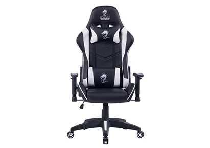 כסא גיימינג Dragon Ggladitor לבן - תמונה 1