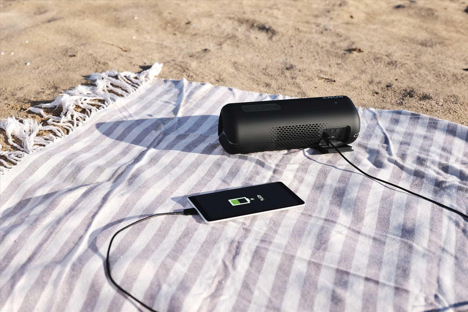 רמקול נייד אפור Sony SRS-XB32H סוני - תמונה 8